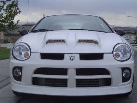 TruFiber - TruFiber A6 Fiberglass Hood: Dodge Neon SRT4 2003 - 2005