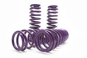 Chrysler 300 Suspension Parts - Chrysler 300 Lowering Springs - D2 Racing - D2 Racing Pro Series Lowering Springs: 300 / Charger / Magnum 2005 - 2010 (RWD)