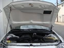 TruFiber - TruFiber A23 Hood: Dodge Magnum 2005 - 2007 - Image 8