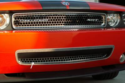 American Car Craft - American Car Craft Lower Grille Overlay: Dodge Challenger 2008 - 2014 - Image 3