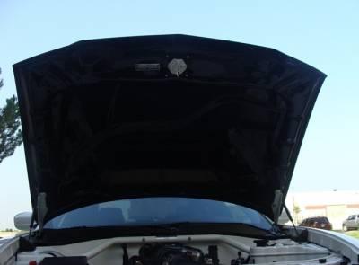 TruCarbon - TruCarbon A58 Carbon Fiber Hood: Dodge Charger 2011 - 2014 - Image 4