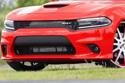 Procharger - Procharger Supercharger Kit: Dodge Charger 6.4L SRT / Scat Pack 2015 - 2019 - Image 6